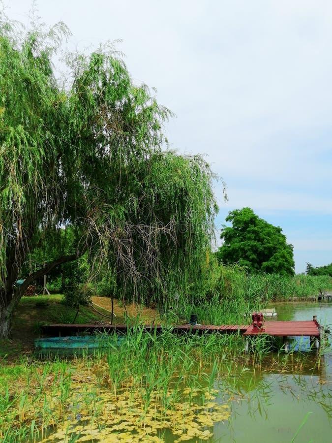 Brug en boot door het meer stock afbeelding