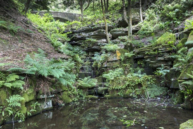 Brug en het ravijn bij de Terrasvormige Tuinen van Rivington royalty-vrije stock foto's