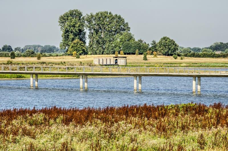 Brug en vogelwaarnemingshut in de alluviale gebieden stock afbeeldingen