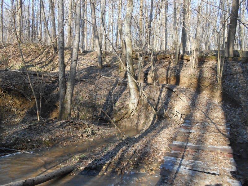 Brug in het bos in de lente royalty-vrije stock foto's