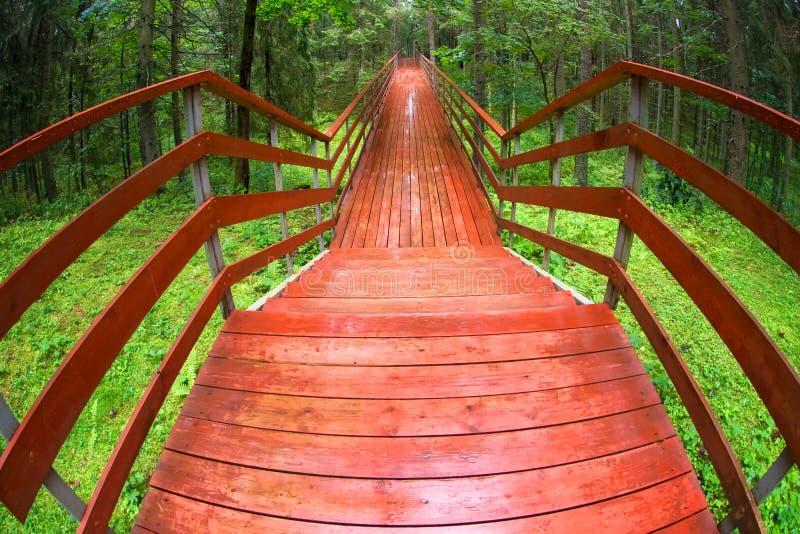 Brug in het bos na de regen royalty-vrije stock afbeelding