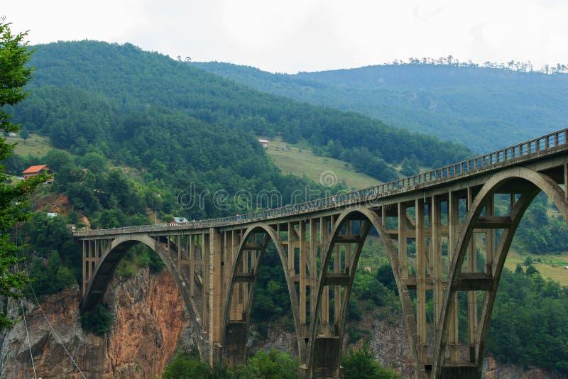 Brug over de Rivier Tara Canyon montenegro royalty-vrije stock fotografie