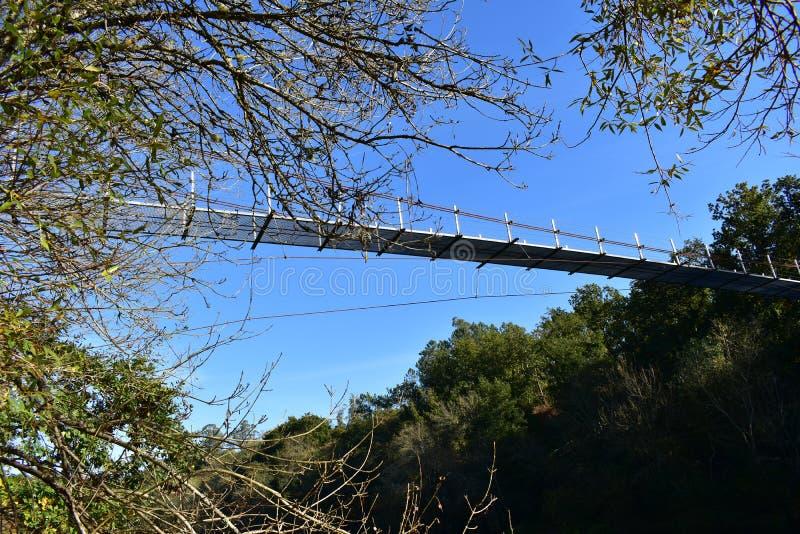 Brug over een rivier in de bosherfst, zonnige dag, blauwe hemel Galicië spanje stock foto's