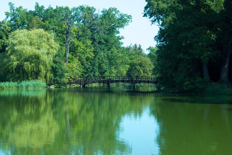 Brug over het meer stock foto's