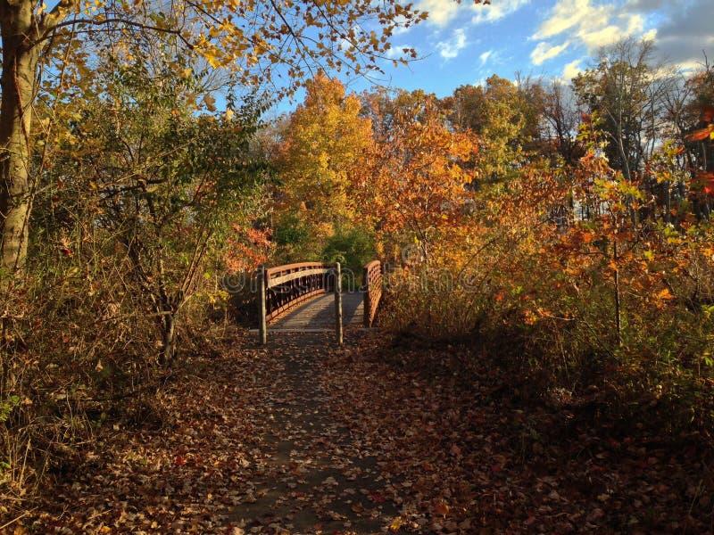Brug over het Moerasland op Autumn Afternoon stock foto's