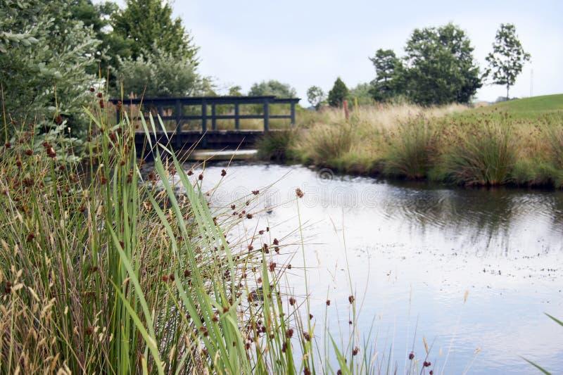 Brug over watergevaar op golfcursus royalty-vrije stock fotografie