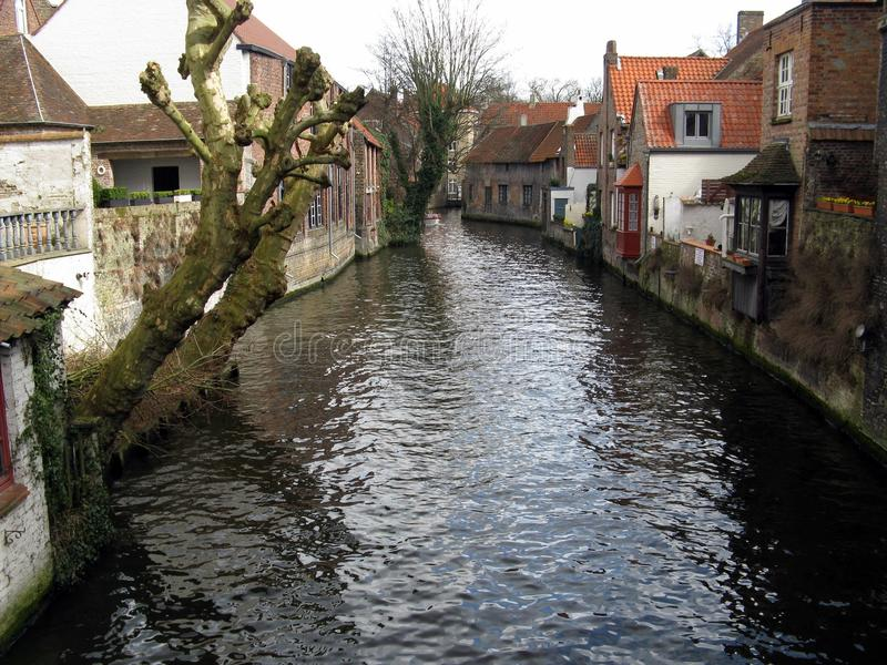 Bruges' canal stock photo