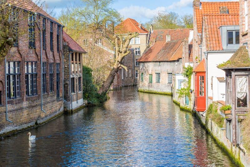 Bruges, case e canali fotografia stock libera da diritti