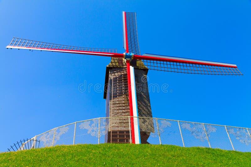 brugge grön lawnwindmill royaltyfri bild