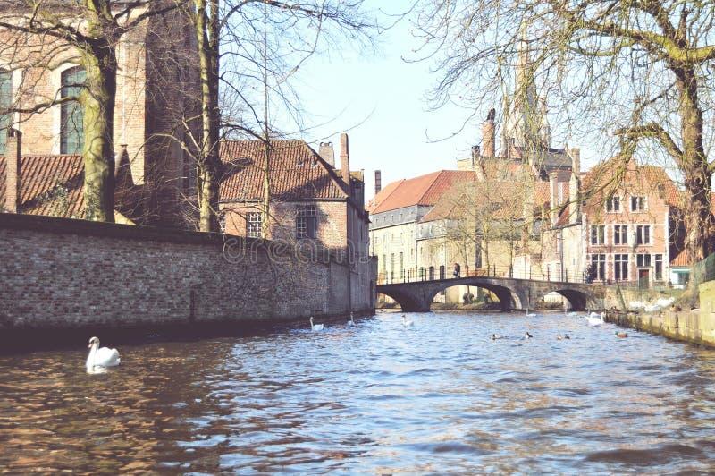Brugge kanal arkivbilder