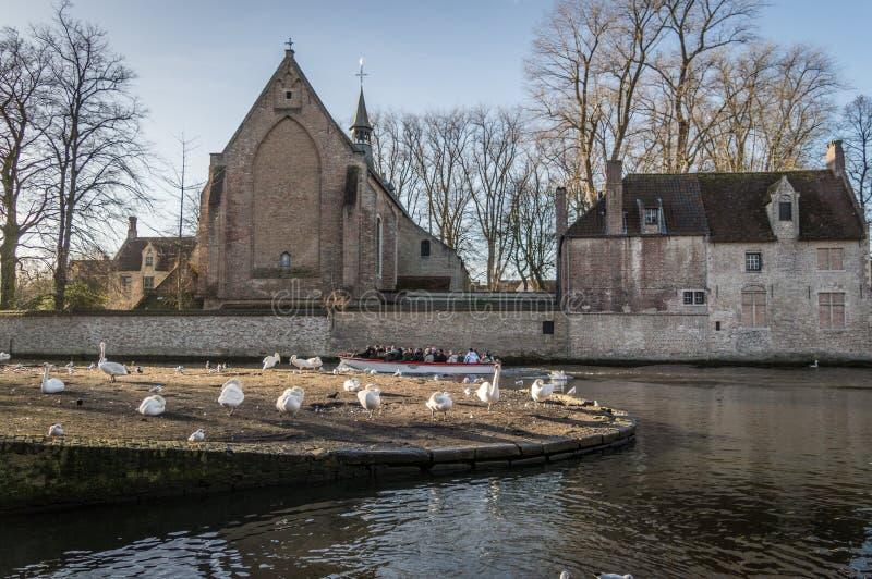 Brugge västra Flanders/Belgien - Januari 2017: Kloster av helgedomar Elisabeth Sauve Garde längs floden med vita svanar royaltyfria foton