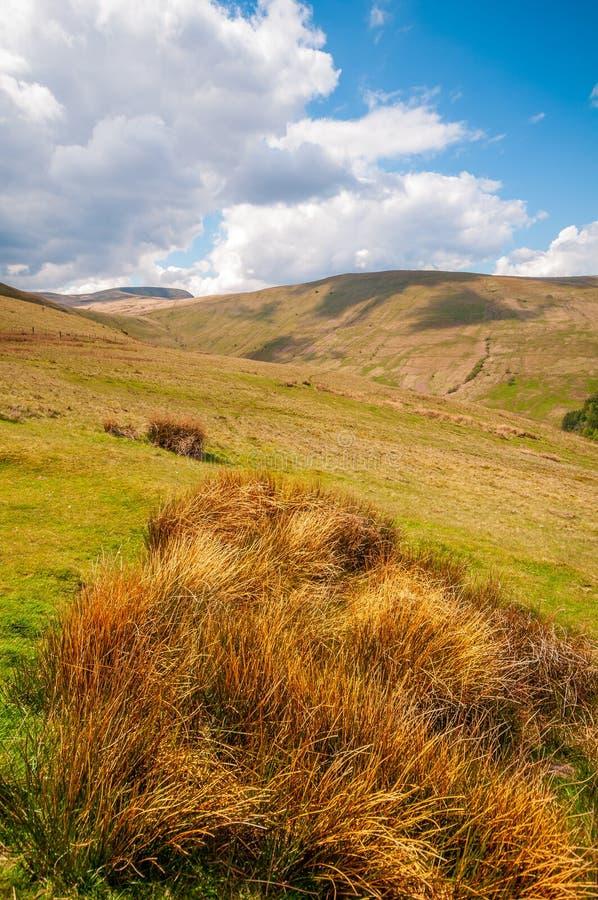 Brughiera aperta scenica nei segnali di Brecon fotografie stock libere da diritti
