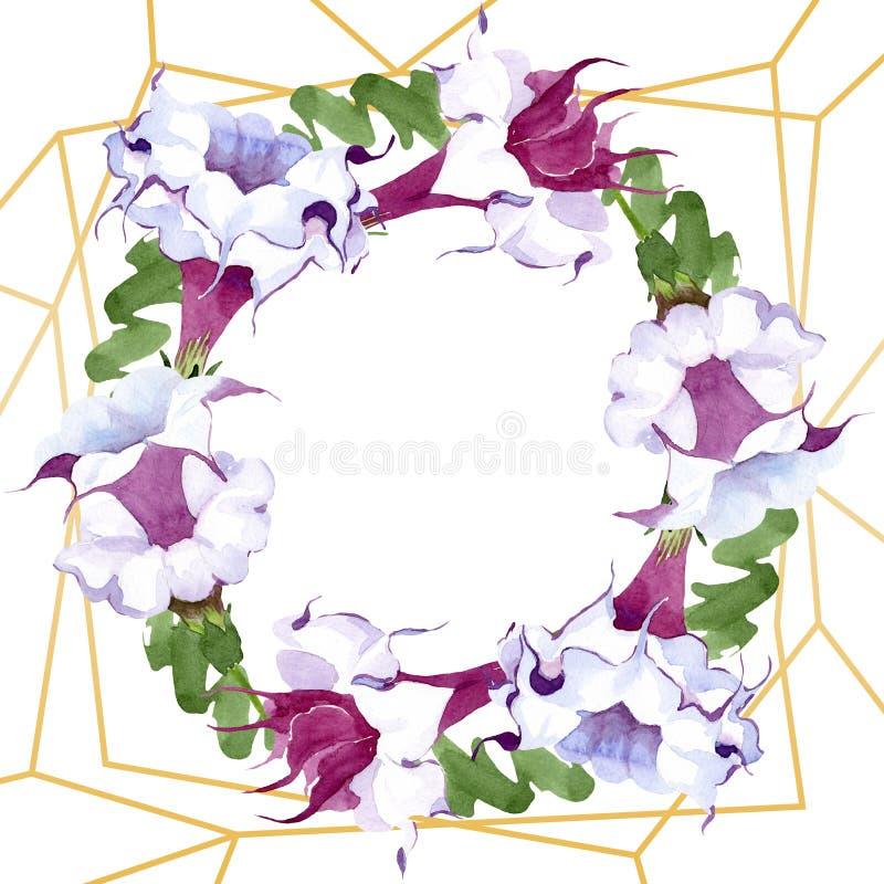 Brugmansia floral botanical flowers. Watercolor background illustration set. Frame border ornament square. Brugmansia floral botanical flowers. Wild spring leaf stock illustration