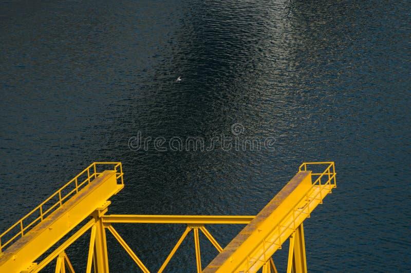 Brugvoet Firat River Lake stock fotografie