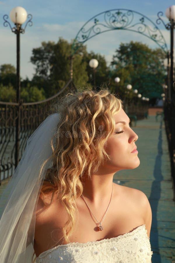 Download Bruid stock foto. Afbeelding bestaande uit betoverend - 10780998