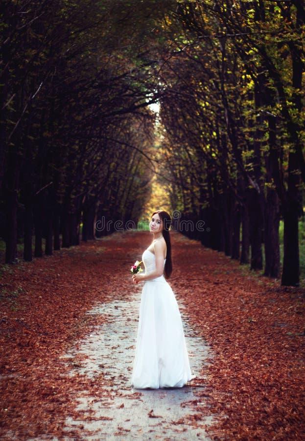 Bruid in aard stock foto's