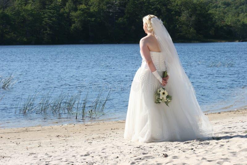 Bruid door het Meer stock afbeeldingen