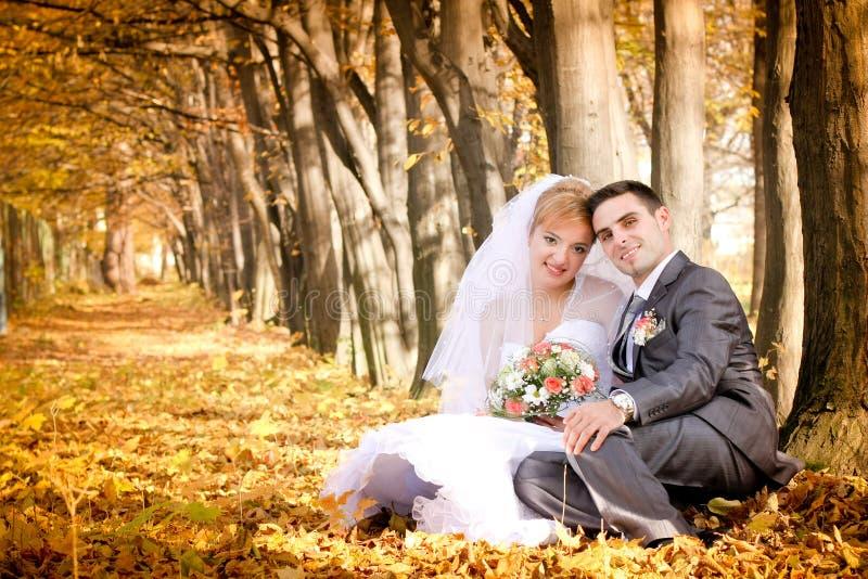 Bruid en bruidegom stock fotografie