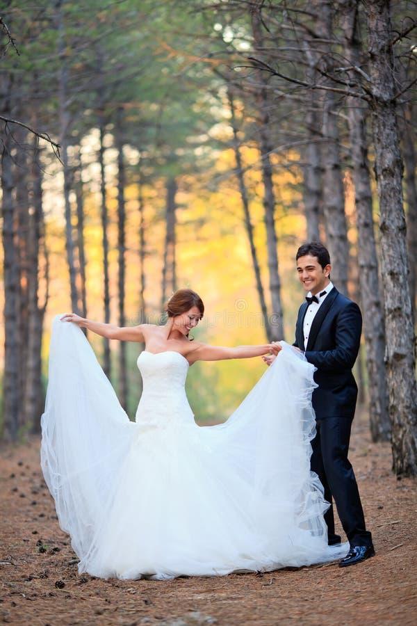 Bruid en bruidegom stock afbeelding