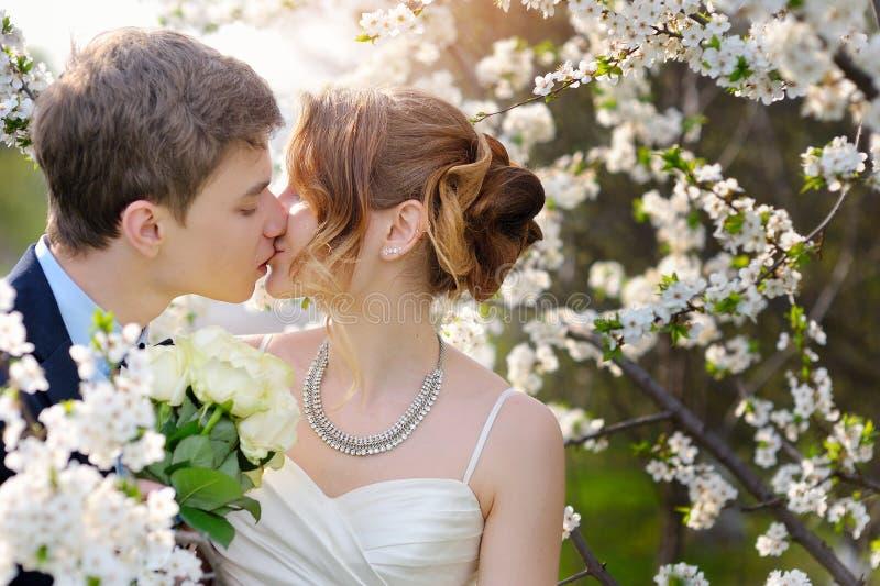 Bruid en bruidegom bij de huwelijkskus in het Park van de de lentegang royalty-vrije stock afbeelding
