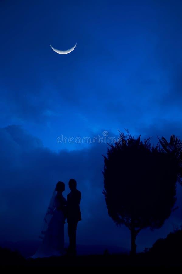 Bruid en Bruidegom in blauwe nacht royalty-vrije stock foto