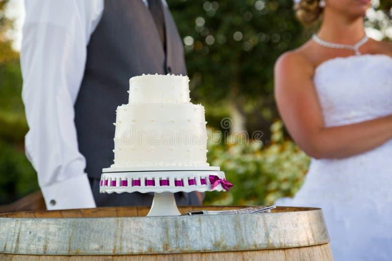 Bruid en Bruidegom Cake Cutting royalty-vrije stock afbeeldingen