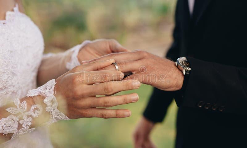 Bruid en bruidegom die trouwringen ruilen royalty-vrije stock afbeeldingen