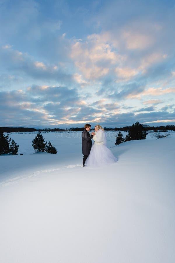 Bruid en bruidegom en de winter lanscape stock fotografie