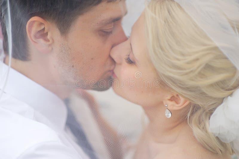 Bruid en bruidegom het kussen onder de sluier stock foto's