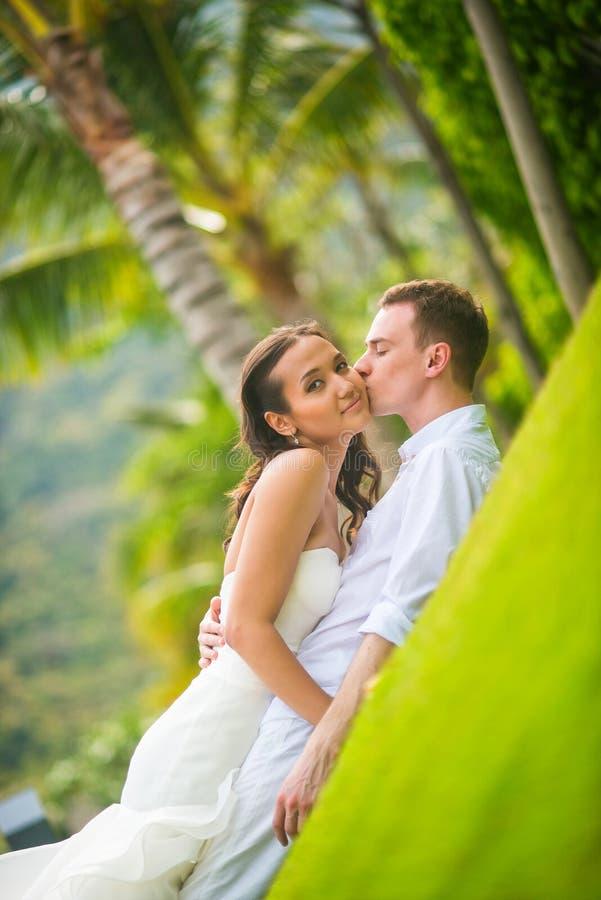 Bruid en bruidegom het kussen op het gazon in de zomer tegen de palmen stock fotografie