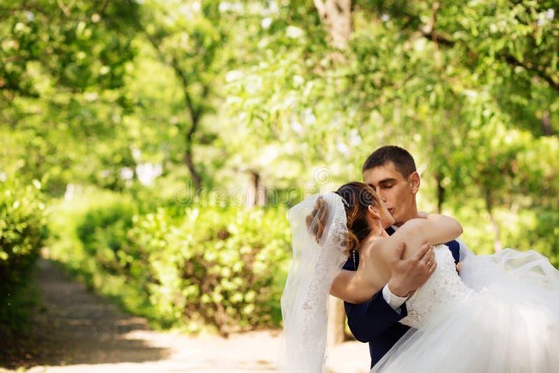 Bruid en Bruidegom Kissing in het Park stock afbeeldingen