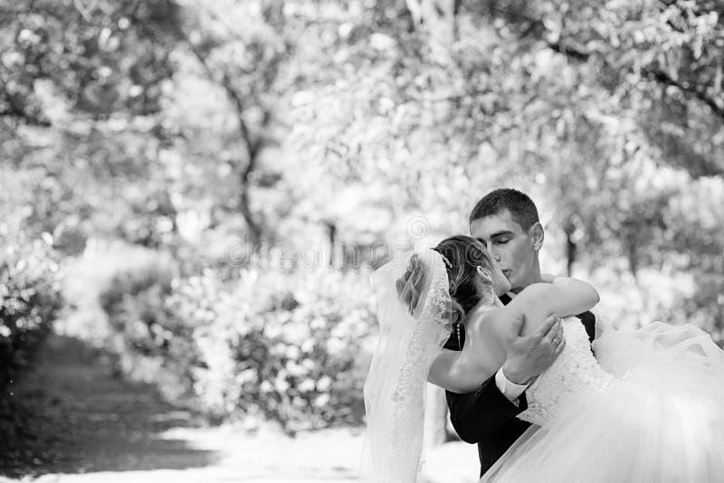 Bruid en Bruidegom Kissing in het Park royalty-vrije stock fotografie