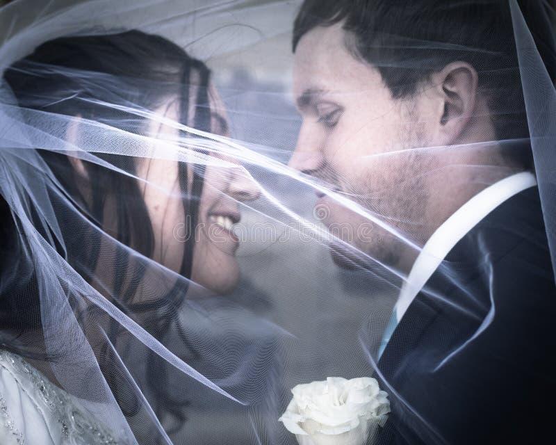Bruid en Bruidegom Kissing Under een Sluier royalty-vrije stock fotografie