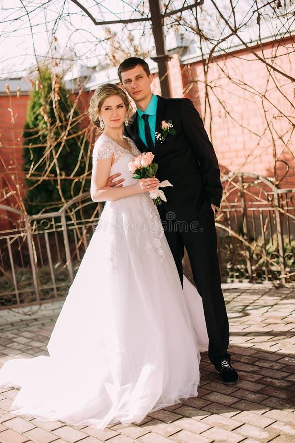 Bruid en bruidegom in park het kussen de bruid en de bruidegom van paarjonggehuwden bij een huwelijk in aard groen bos kussen fot royalty-vrije stock fotografie