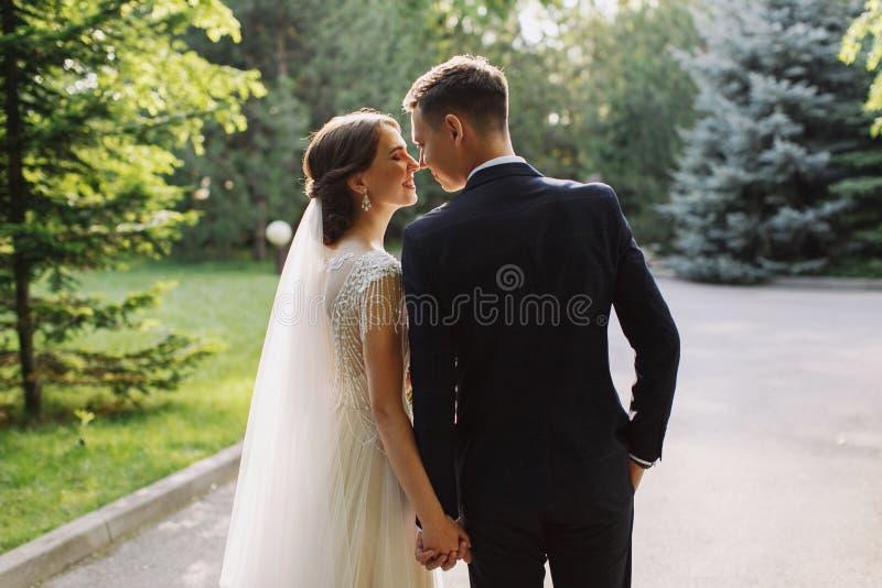 Bruid en bruidegom in park het kussen De de gelukkige bruid en bruidegom van paarjonggehuwden bij een huwelijk in aard groen bos  stock afbeeldingen