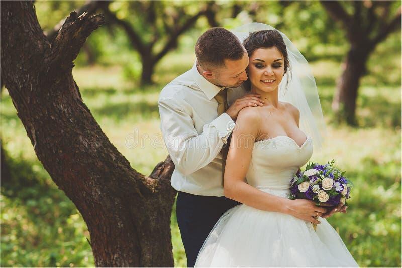 Bruid en bruidegom in park het kussen de paarjonggehuwden bij huwelijk in aard groen bos zijn fotoportret stock afbeeldingen