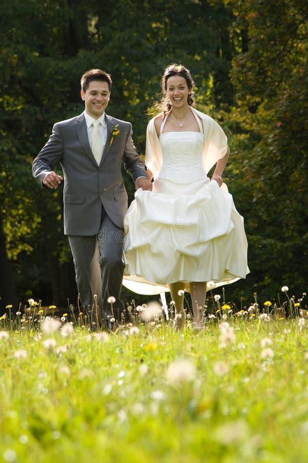 Bruid en bruidegom in weide royalty-vrije stock afbeeldingen
