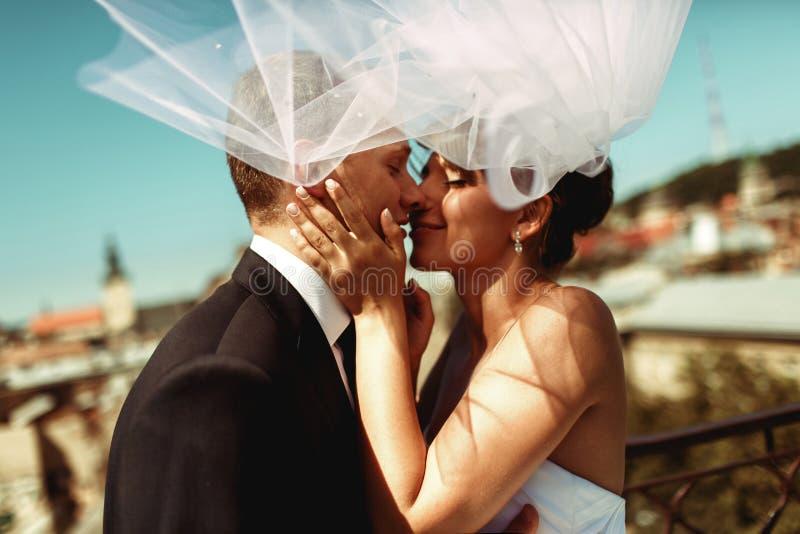 Bruid en bruidegomkussen teder in de schaduw van een vliegende sluier stock foto's