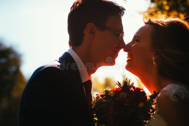 Bruid en bruidegomsilhouetten op de achtergrond van het hemelpark stock foto