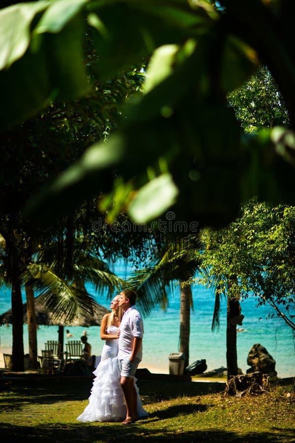 Bruid en bruidegomtribune in het midden van tropische installaties tegen het overzees Grote tropische bladeren in de voorgrond royalty-vrije stock afbeelding