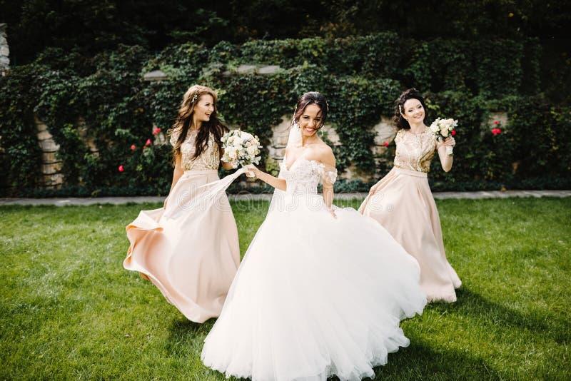 Bruid met bruidsmeisjes op het park op de huwelijksdag stock fotografie