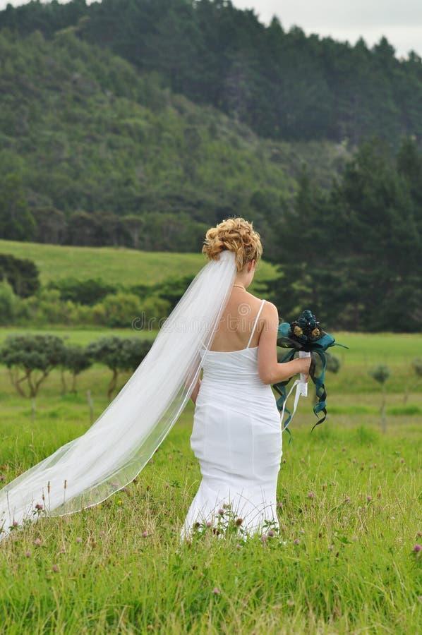 Bruid in weide stock foto