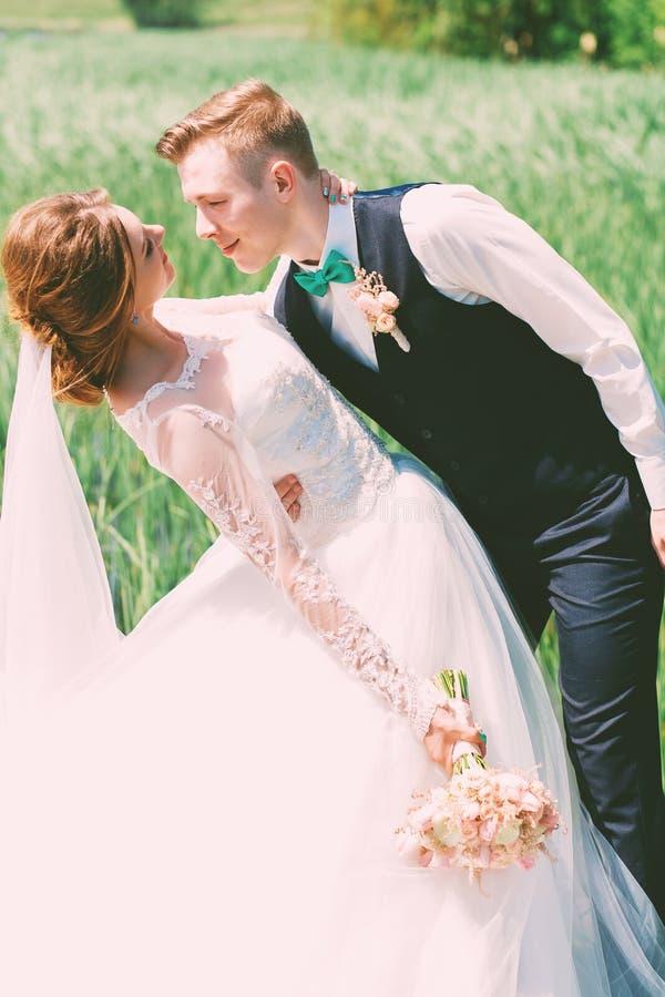 Bruidegom die glimlachende bruid op gebied omhelzen stock fotografie