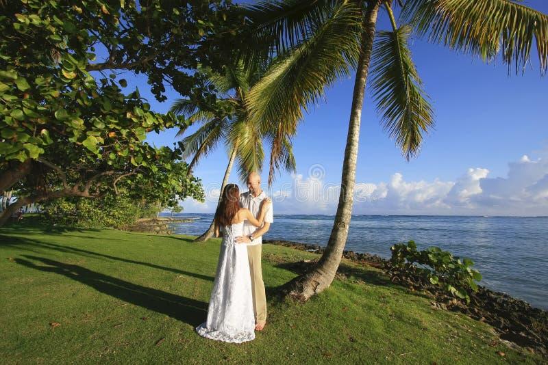 Bruidegom en bruid die zich door palm bevinden royalty-vrije stock afbeeldingen