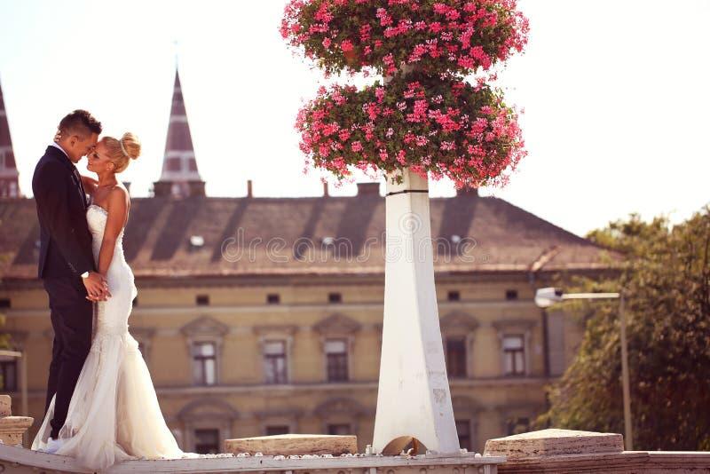 Bruidegom en bruid het kussen op een metaalbrug stock foto