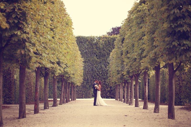 Bruidegom en bruid in het park royalty-vrije stock afbeelding
