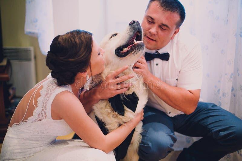Bruidegom en bruid het spelen met hun hond Labrador thuis royalty-vrije stock afbeelding