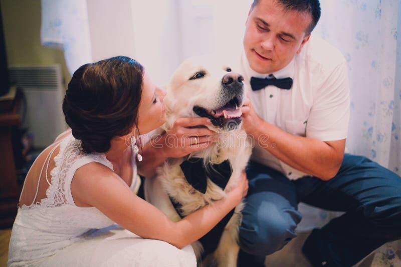 Bruidegom en bruid het spelen met hun hond Labrador thuis stock foto's
