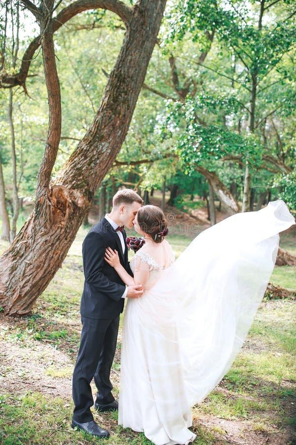 Bruidegom en bruid samen Huwelijks romantisch paar openlucht stock foto