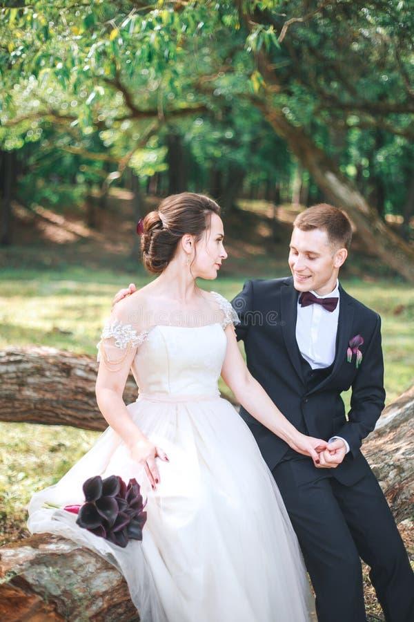 Bruidegom en bruid samen Huwelijks romantisch paar openlucht royalty-vrije stock afbeeldingen